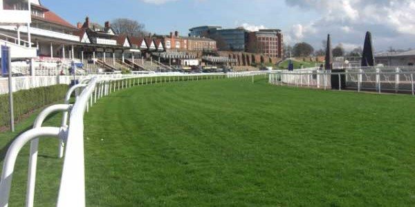 Racecourse Field